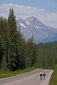 Bicyclists on road from Maligne Lake in Jasper National Park, Alberta.