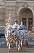 Horse-drawn carriage at the Odessa Opera House