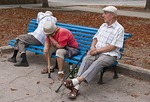 Elderly sitting on park bench with empty beer bottles in Sevastopol.
