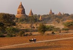 Horse cart passing ruins of ancient temples and stupas on Bagan Plain in Myanmar.