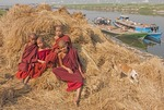 Novice monks and dog playing in hay stack along Ayeyarwaddy River near Mandalay.