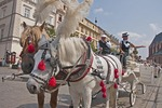 Horse-drawn carriages for hire in Krakow's Main Market Square.