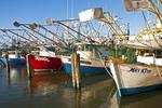 Mississippi Gulf Coast commercial shrimping boats in marina at Biloxi.