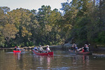 Wolf River Canoes on the scenic river near the Mississippi Gulf Coast.