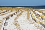 Fences to control sand erosion on West Ship Island of Gulf Islands National Seashore in Gulf of Mexico.
