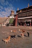 Palkhor Chode Buddhist monastery with Kimbum Stupa in Gyangze, Tibet.
