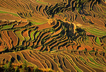 Terraces in early spring at Yuanyang in Yunnan province, China.