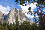 Yosemite National Park's El Capitan granite monolith.