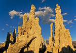 Mono Lake tufa formations at dawn.