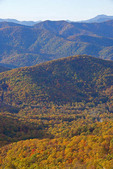 Autumn color from a Blue Ridge Parkway overlook in southern Appalachians near Asheville, North Carolina.