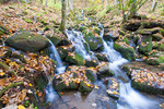 Stream during autumn in Great Smoky Mountains National Park.