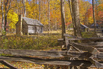 Alex Cole cabin on Roaring Fork Motor Nature Trail in Great Smoky Mountains National Park during autumn.