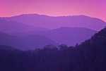 Early morning light at Great Smoky Mountains National Park.