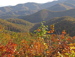 Great Smoky Mountains National Park in autumn.