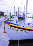 Boats at sponge docks at Tarpon Springs, Florida.