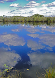 Everglades National Park,