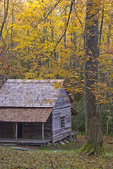 Log cabin on Roaring Fork Motor Nature Trail in Great Smoky Mountains National Park in Tennessee.