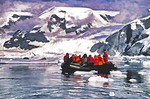 Antarctica tourists in zodiac viewing leopard seals in Neko Harbor of the Antarctic Peninsula.