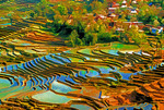 Yuanyang County village and rice terraces, built by the Hani nationality, in southwest Yunnan province