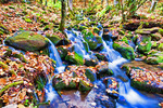 Appalacian stream during autumn in Great Smoky Mountains National Park, North Carolina, USA.