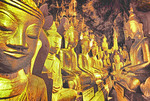 Some of the nearly 9000 Buddha statues in the Pindaya Caves, Pindaya, Shan State, Myanmar (Burma).