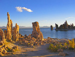 Tufa formations in Mono Lake in early morning, Lee Vining, California.