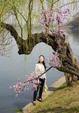 Young woman admiring plum blossoms in spring along Xuanwu Lake in Nanjing.