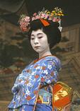 Geisha dancing Cherry Blossom dance, Miyako-Odori, at Gion Corner, Kyoto, Japan.
