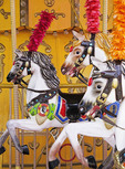 Horses on carousel in Albanian amusement park.