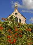 Barbados: Bridgetown's Saint Michaels Cathedral built in 1786 of coral stone