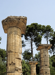 Doric columns from Temple of Hera ruins in Olympia.