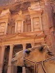Camel at The Treasury in Petra.