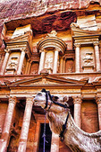 Camel in front of The Treasury at Petra.  --Digital Photo Art Painting from original photograph