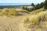 Oregon Dunes National Recreation Area along Pacific Coast Scenic Byway.