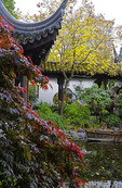 Lan Su Chinese Garden (Garden of Awakening Orchids) in Suzhou-style, Portland, Oregon.