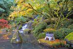 Autumn in the Portland Japanese Gardens.