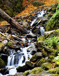 Waterfall at Starvation Creek State Park, Oregon, in autumn.