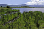 Ngoitokutok Lake in Ngorongoro Crater is popular picnic area.
