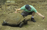 Man making a selfie with a giant Aldabra tortoise on Zanzibar's Prison Island giant land tortoise sanctuary.