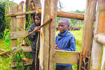 Farm boy cattle herders at Nshenyi Cultural Village Farm Bondas.