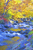 Mountain stream in autumn in Smoky Mountains.  --Digital Photo Art Painting