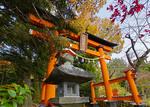 Chureito Pagoda torii gate and autumn color.