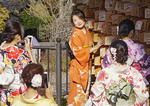 Young women tourists wearing rented kimonos having a fun photo session in Kyoto.