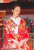 Bride praying during Shinto wedding ceremony at Grand Kasuga Taisha Shrine in Nara, Japan.