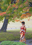 Japanese woman wearing kimono in Shinjuku Gyo-en National Garden  in Tokyo