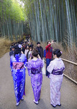 Tourists walking pathway through Arashiyama Bamboo Forest at Tenryu-ji Temple in Kyoto.