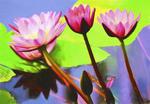 Water lily in greenhouse of Shinjuku Gyo-en National Garden in Tokyo. --digital photo art painting