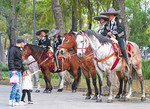 Mexico City mounted police in park