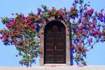 San Miguel de Allende flowers around arched door way.
