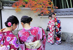 Young women tourists wearing rental kimonos taking turns photographing themselves at Tenryu-ji Temple with autumn leaves in Kyoto.